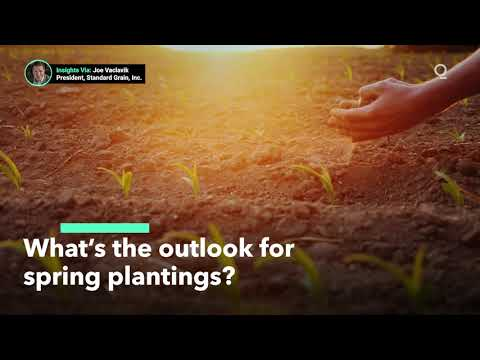 It's Too Cold for Many U.S. Farmers to Start Spring Plantings