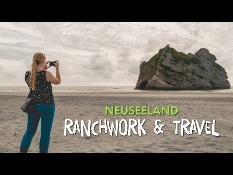 Ranchwork And Travel in Neuseeland 🐴🗺️🌞 | AIFS Educational Travel