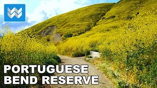 Hiking the Portuguese Bend Reserve at Rancho Palos Verdes, California USA 🎧 3D Binaural Audio 【4K】
