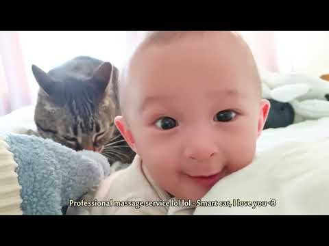 Adorable Cats Loving and Playing Babies   Cute Baby and Pets Video
