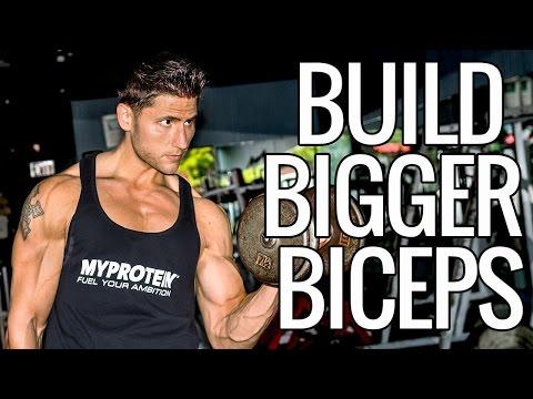 How To Build Bigger Biceps - UCHZ8lkKBNf3lKxpSIVUcmsg