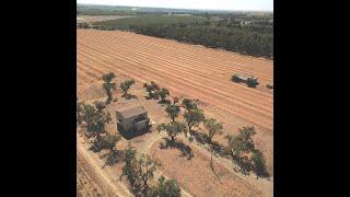1671 Alexander Hill Lane Dunnigan California Home & Property Acreage Land Sale Real Estate Company