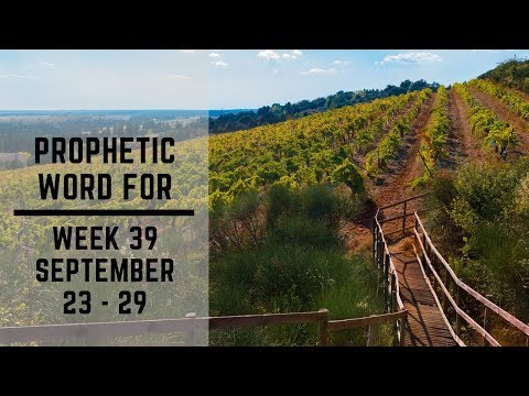 Prophecy For Week 23 September
