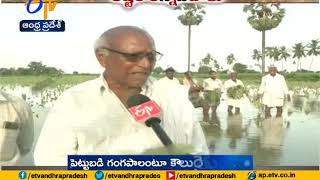 Huge Crop Loss With Floods   Hundreds OF Farmers Facing Problems   in State