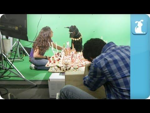 Behind the Scenes - Katy Puppy - California Grrrs - UCPIvT-zcQl2H0vabdXJGcpg