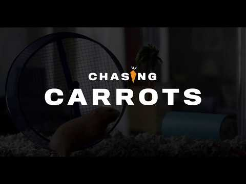Chasing Carrots - Life.Church Sermon Series Promo