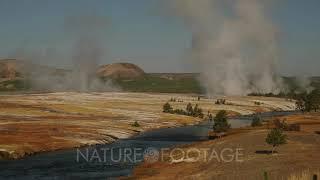 Firehole River Near Grand Prismatic Spring