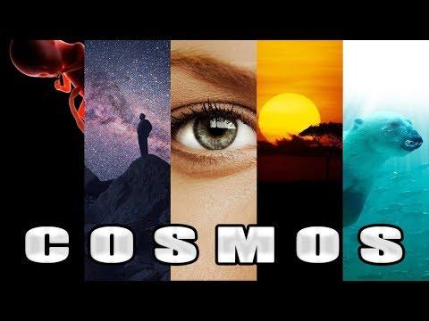 पुरे ब्रह्माण्ड का इतिहास - The Cosmic Calendar