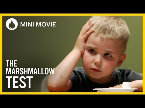 The Marshmallow Test - UCsHof0eB6MLRm0tHmpW7ILg