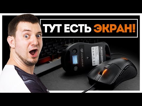 Маленький Rival c ЭКРАНОМ за НЕДОРОГО! Cougar Surpassion! - UCgv56Aq2_7CakA3prUNzdWQ