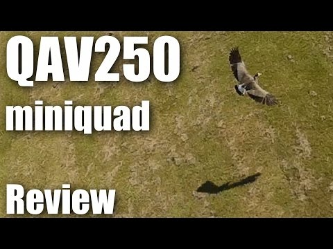 Review: QAV250 mini quadcopter - UCahqHsTaADV8MMmj2D5i1Vw