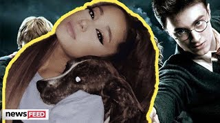 Ariana Grande RESCUES Harry Potter Puppies!