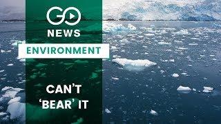 Alarming Arctic Ice Meltdown