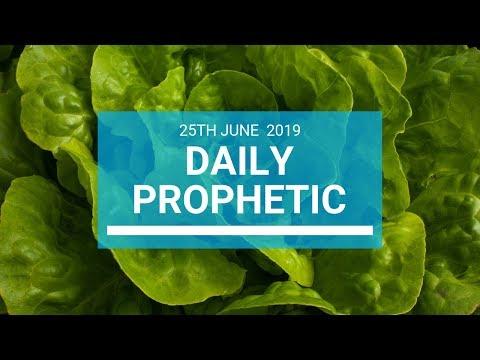 Daily Prophetic 25 June 2019 Word 1