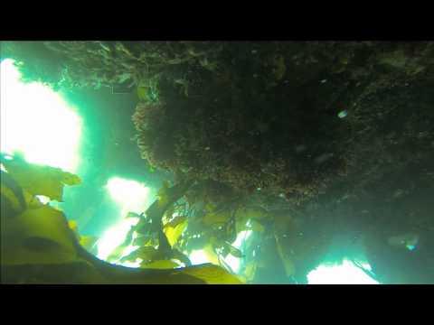EPIC - GoPro Quadcopter Crash Video - Includes Underwater Descent Into Davy Jones' Locker - UCfZYQyLgAEBIr2ZWC-vGZww