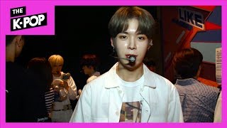 FANATICS, D1CE, TRCNG, VERIVERY, CIX Backstage [BEHIND THE SHOW 190806]