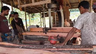 Expensive Red Wood Cutting for Bed Making।Rear Red Wood Cutting at Saw Mill।Sawmill Cutting Red Wood