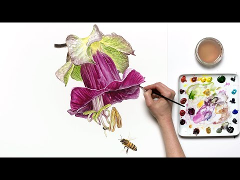 How to paint a 3D Mexican Ivy flower in watercolor