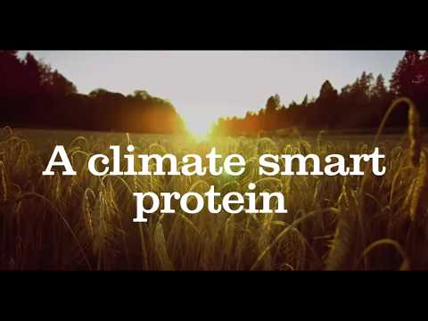 A climate smart protein