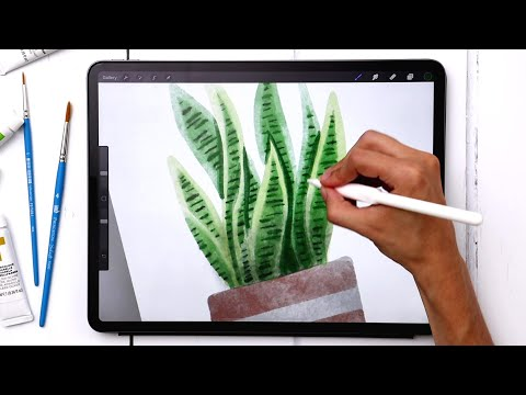 Paint a Watercolor Snake Plant in Procreate