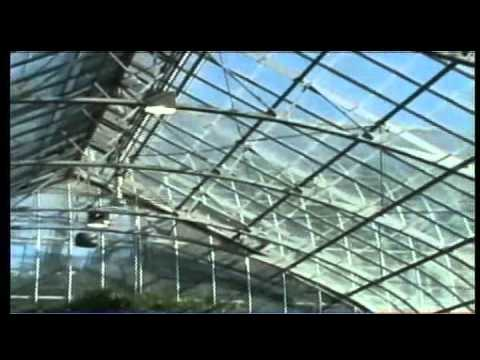 Competitive Edge:Rough Greenhouses & Conservatories