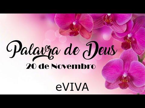 PALAVRA DE DEUS PARA HOJE 20 DE NOVEMBRO eVIVA MENSAGEM MOTIVACIONAL PARA REFLEXÃO DE VIDA