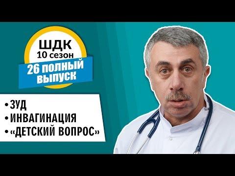 shdk 10 26 youtube