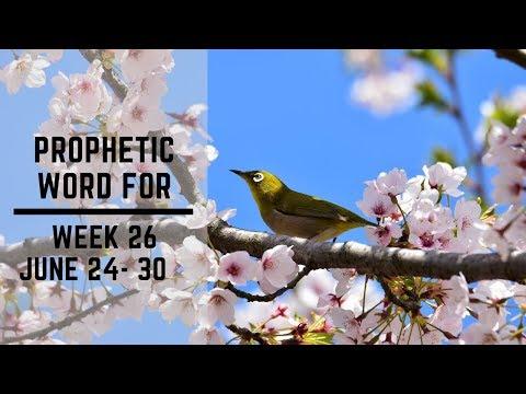 Weekly Word 24 June 2019