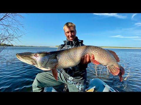 Кого скрывают воды ИРТЫША? Щуки-МОНСТРЫ! Рыбалка на Севере.