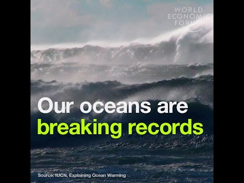 Our oceans are breaking records - But not for the right reasons