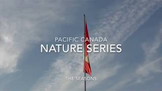 PACIFIC CANADA Nature series 2019