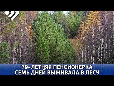 Спустя неделю нашли пенсионерку, пропавшую в лесу
