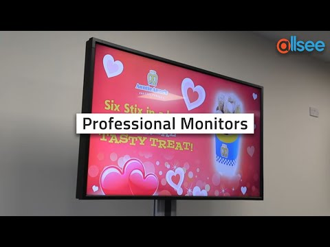 Allsee Professional Monitors with 43 Inch