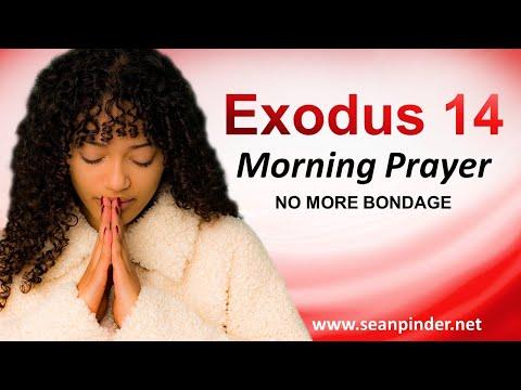 No More BONDAGE - Exodus 14 - Morning Prayer