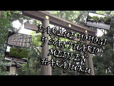 El Parque Yoyogi y el Santuario Meiji en Harajuku, Shibuya, Tokio