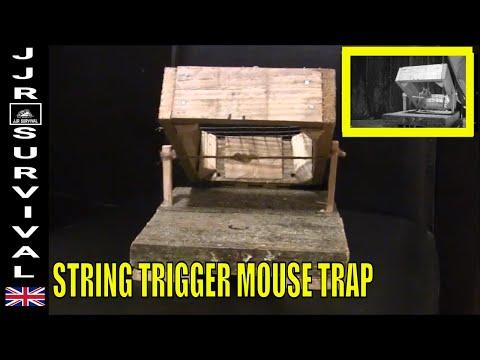 STRING BOX TRAP (mouse trap)