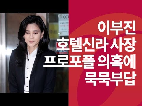 '프로포폴 투약 의혹'에 입 다문 이부진 사장