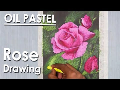 How to Draw Rose in Oil Pastel step by step with color information