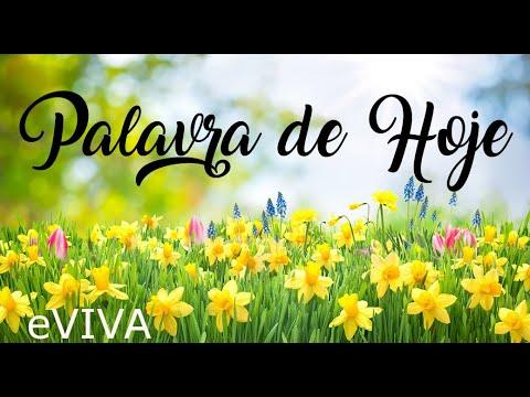 PALAVRA DE HOJE 27 DE MAIO 2020 eVIVA MENSAGEM MOTIVACIONAL PARA REFLEXÃO ROMANOS 8 BOM DIA!