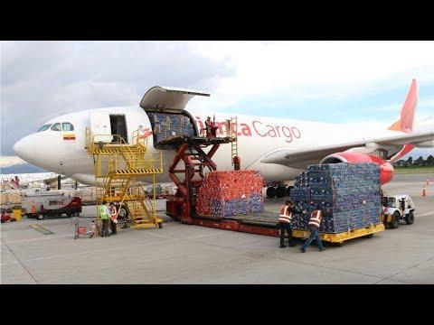 Colombia xuất cảng 35,000 tấn hoa sang Mỹ nhân dịp Valentine's Day