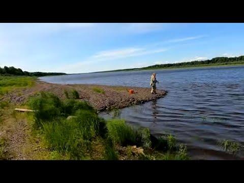 Рыбалка на СПИННИНГ с берега / Эта резина сводит окуня с ума