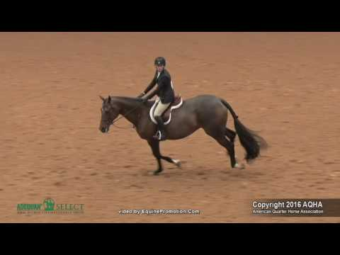 A Judges Perspective: 2016 Select Equitation Over Fences World Champion