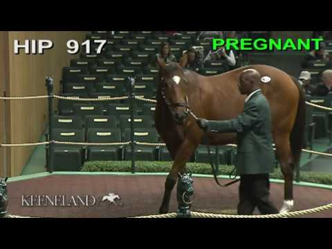 2016 Keeneland November Sale Day 4 Recap