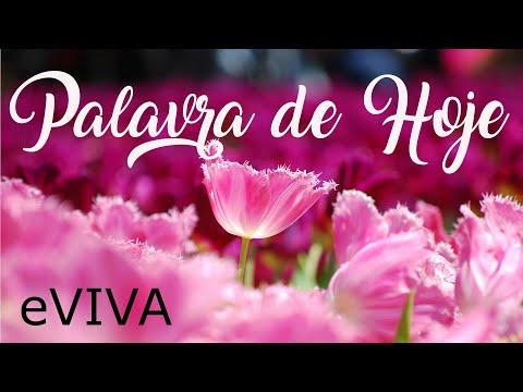 PALAVRA DE HOJE 13 DE JUNHO 2020 eVIVA MENSAGEM MOTIVACIONAL PARA REFLEXÃO SALMO 27 14 BOM DIA!