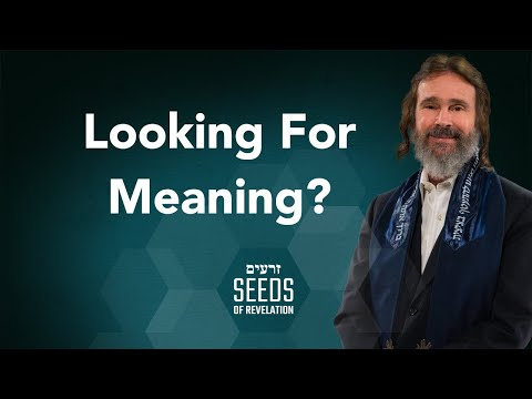 Looking For Meaning?