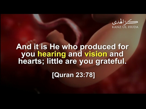 Hearing and Seeing Inside the Womb | Scientific Miracles of Quran | Sam Team of TIENS