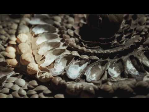 Explore Margate's Shell Grotto