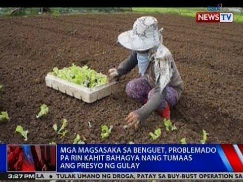 NTVL: Mga magsasaka sa Benguet, problemado pa rin kahit bahagya nang tumaas ang presyo ng gulay
