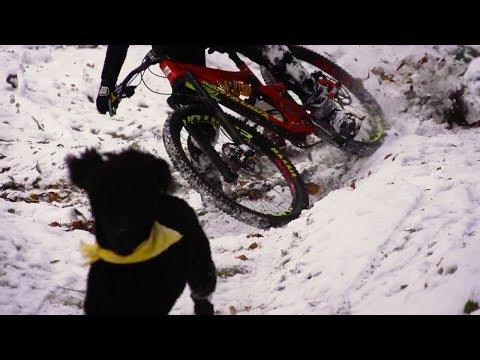 Snow, Ride and Dog Enduro MTB | Lucky Boy Born to Ride