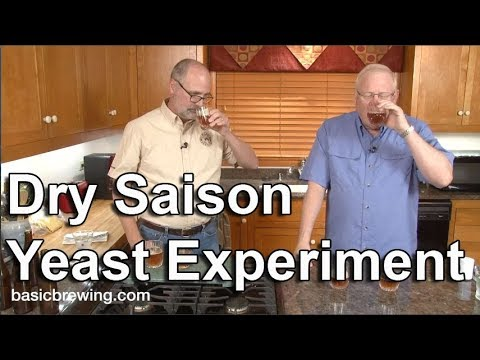 Dry Saison Yeast Experiment - Basic Brewing Video - December 15, 2017